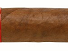 Partagas - Series D No.4